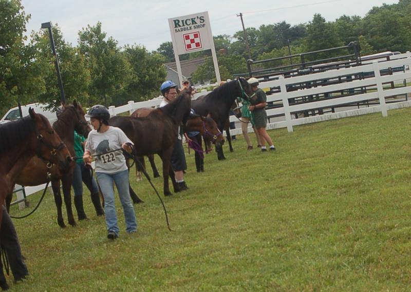 2nd annual USWHBA fun show June 2011.